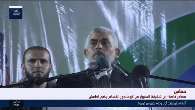 قناة اسرائيلية : ابن شقيقة السنوار أحد عناصر كوماندوز القسام ينضم لداعش سيناء