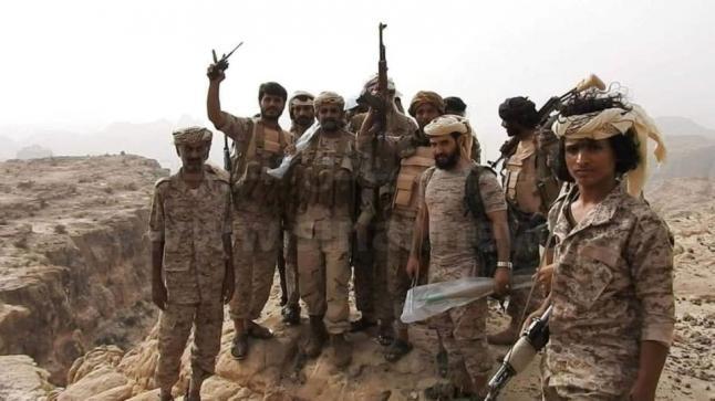 مقتل 8 قيادات ميدانية حوثية بجبهة الساحل الغربي