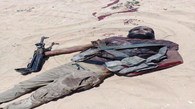 بالصور جثت التكفيريين بعد احباط هجوم ارهابي تكفيري على أحد تمركزات اتحاد قبائل سيناء في الشيخ زويد